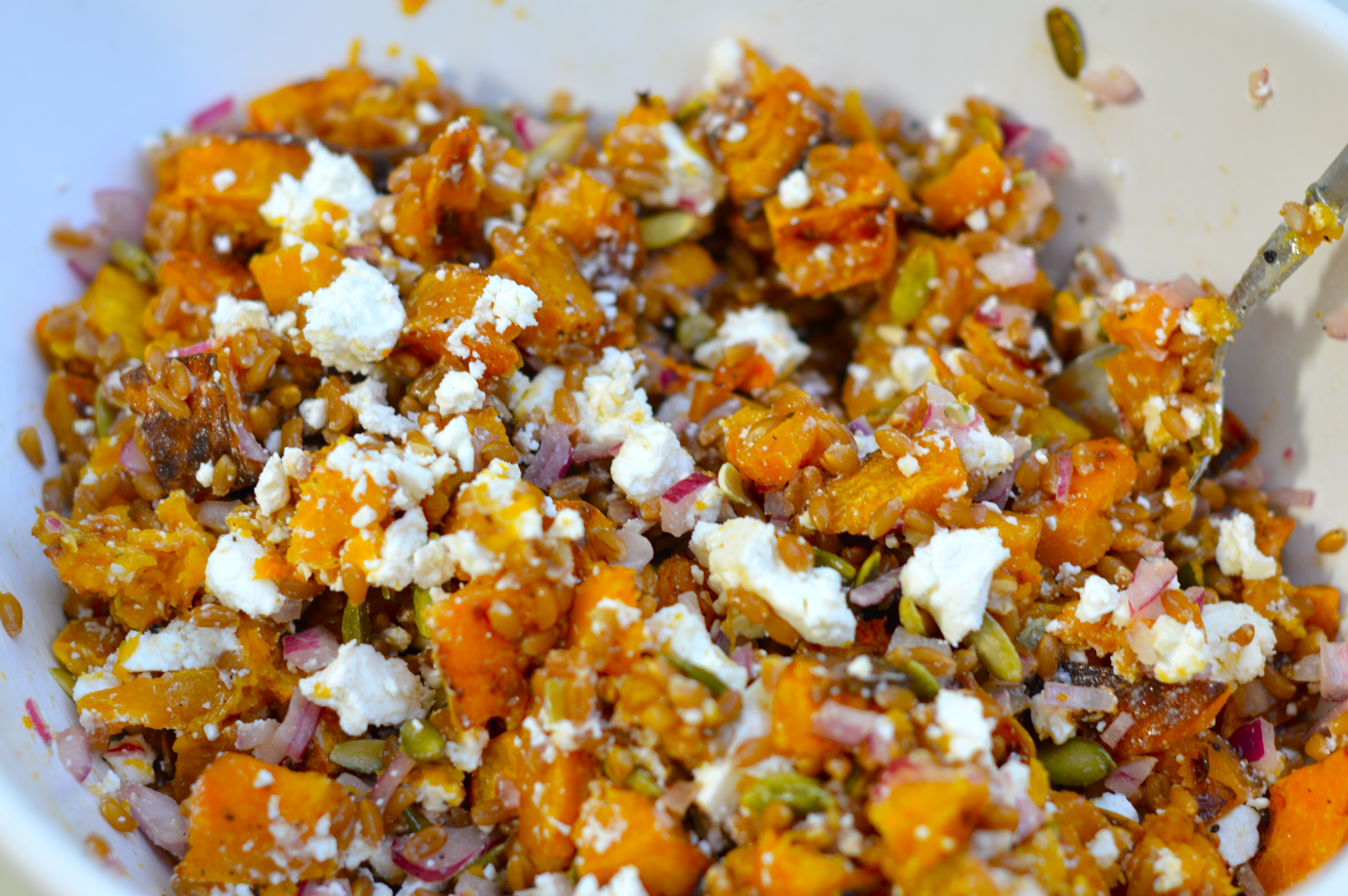 roasted butternut squash and chickpea wheatberry salad warm butternut ...